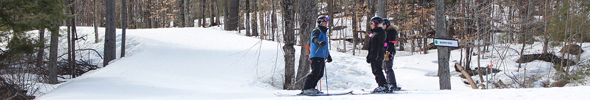 A ski instructor and student on skis.